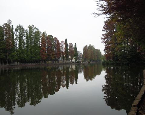 Bessyonumapark