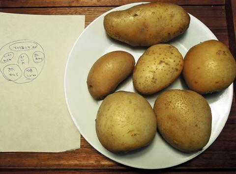 Potatokurabe1
