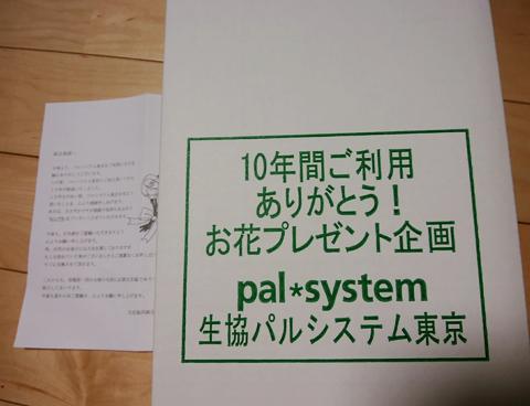 Pal10_2