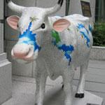 030906_cow2.jpg